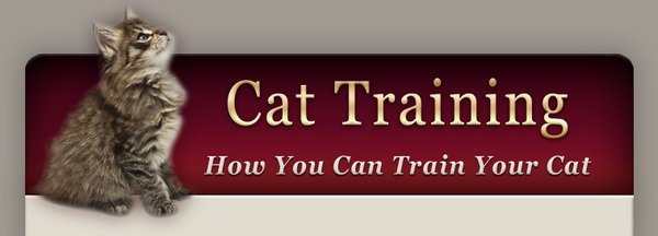 Product picture Training Your Cat-The Simple Ways